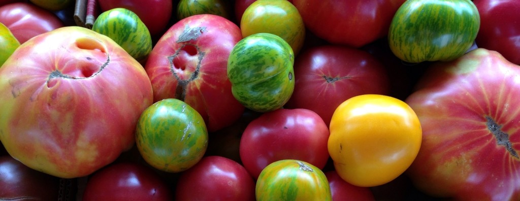 Heirloom Tomatoes from the Farmers Market